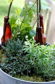 grow a beer garden tilly u0027s nest