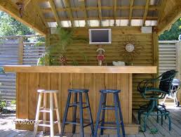 backyard tiki bar houzz