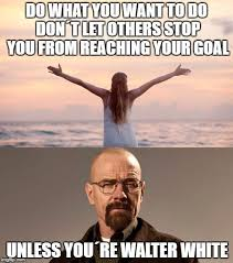 do what you want to do unless you re walter white breaking bad