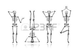 skeleton sketches for your design royalty free cliparts vectors