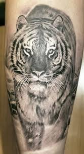 angry lion animal tattoo tattoomagz