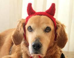 Halloween Pet Costume Funny Dog Costume Etsy