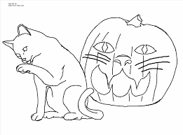 o lantern coloring pages pumpkin coloring page halloween cat