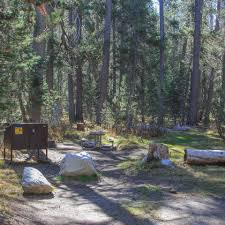 white wolf campground yosemite national park camping in california