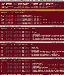 nginx access log analyzer goaccess a real time apache and nginx web server log analyzer