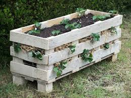 25 diy ideas using pallets for raised garden beds snappy pixels