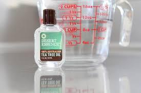Tea Tree Oil Bathroom Cleaner Diy Non Toxic Household Cleaners U2013 Rachel Talbott