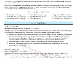 Technology Manager Resume It Manager Resume Samples It Manager Resume Sample 8 It Manager