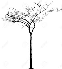 vector drawing of the small winter tree royalty free