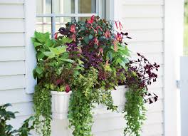window planters indoor plant window box planters excellent window planter boxes london