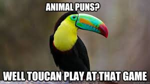 Animal Pun Meme - animal pun memes 006 toucan play that game comics and memes