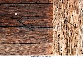 nail in wood stock photos nail in wood stock images alamy