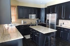 New Kitchen Design Ideas New Home Kitchen Design Ideas Amazing 100 Kitchen Design Ideas