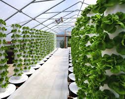 Six Mega Trends In Indoor Agriculture Agfundernews