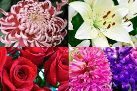 types of flower arrangements the meaning behind 8 different types of popular funeral flowers