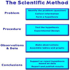 scientific method template 28 images here is a easy and free
