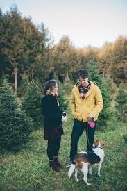 Washington Christmas Tree Farms - christmas tree farm engagement shoot uncategorizedng venue va