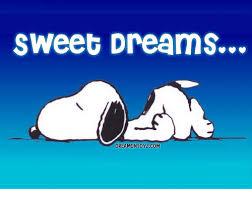 Sweet Dreams Meme - 25 best memes about sweet dreams sweet dreams memes