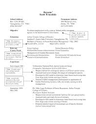 resume examples for retail resume example grocery store frizzigame retail store manager resume examples resume examples and free
