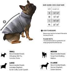 australian shepherd size chart size guide