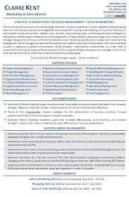 Sales And Marketing Manager Resume Examples by Executive Resume Examples