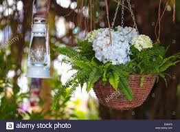 Beautiful Flower Arrangements by Begonia Flower Bouquet And Vintage Lantern In The Beautiful Flower