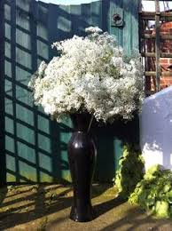 wedding flowers kent gypsophillia so simple but beautiful flower fairy
