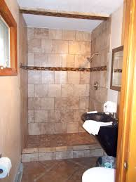 Best 10 Shower No Doors Ideas On Pinterest Bathroom Showers Lively
