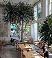 Restaurants Near Botanical Gardens The 10 Best Restaurants Near Botanical Garden Hortus Botanicus