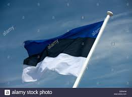 Estonian Flag Estonian Flag Flying On Flagpole Stock Photo Royalty Free Image