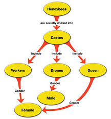 how to make a concept map in microsoft word techwalla com