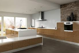 High Gloss Kitchen Cabinets by High Gloss Kitchen Doors Detrit Us