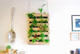 top vertical wall planters indoor for indoor wall planters