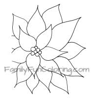 poinsettia coloring pages printable christmas coloring pages familyfuncoloring