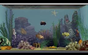 Cycling Home Decor by Fish Tank Pirate Lego Fish Tank In My Home Decor Pinterest Cloudy