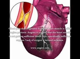 strauss heart drops strauss heartdrops does strauss heartdrops work dailymotion