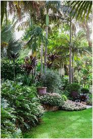 backyards appealing tropical backyard landscaping ideas 44