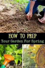 785 best images about garden on pinterest gardens plants and