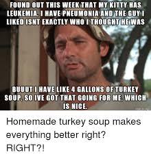 Leukemia Meme - found out this week that my kitty has leukemiai have pneumonia and