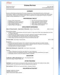 C Level Executive Assistant Resume Sample 28 Best Executive Assistant Resume Examples Images On Pinterest