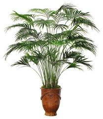 large kentia palm tree in centerpiece artificial flower