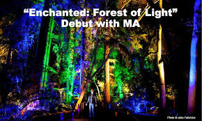 enchanted forest of light tickets enchanted forest of light debut with ma descanso gardens in la