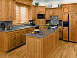 european kitchen vs american contemporary kitchen ideas pictures