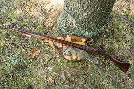 smokepole squirrels missouri department of conservation