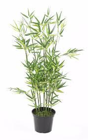 Plante Artificielle Exterieur Ikea by Plante Fleurie Artificielle Brest 3736 Rakeshrana Website