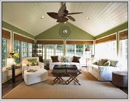 wool sisal rugs home design ideas