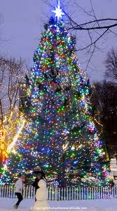 boston tree lighting events schedule 2017 boston