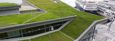 vancouver convention centre green roof flynn group of companies