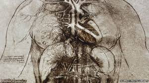 He Made Accurate Drawings Of The Human Anatomy What Leonardo Taught Us About The Heart Bbc News