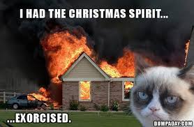 Christmas Grumpy Cat Meme - 30 very funny grumpy cat pictures and images you need to see